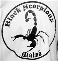 Black_20Scorpions_20Malmo_2